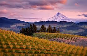 Valley Oregon Willamette Valley Events Oregon City Dundee Corvallis Eugene