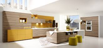 remodell your hgtv home design with fabulous interior endearing alno san francisco european kitchen design at cabinets