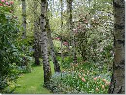 1957 best garden images on landscaping gardens and