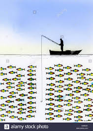 unsuccessful fisherman with large group of fish ignoring fishing