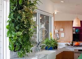 the 25 best indoor vertical gardens ideas on pinterest wall dunneiv