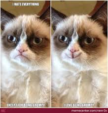 Grumpy Cat Meme Love - grumpy cat loves being grumpy by rawr3x meme center
