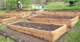 lovely decoration raised bed vegetable garden exciting raised bed