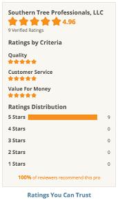 customer reviews top atlanta tree removal service