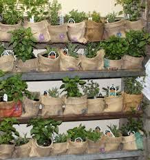 Flower Planter Ideas flower pot ideas for fall flower pot ideas for fresh decorative
