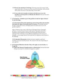 lesson 9 basic vegetable gardening natural pesticides