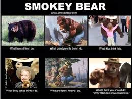 Smokey The Bear Meme Generator - helpgood digital first marketing agency for nonprofits and cause