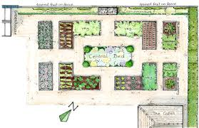 cozy design vegetable garden design layout illustration