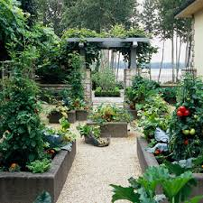 vegetable gardening 10 must grow plants