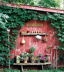 outside garden ideas