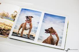 Dog Photo Albums Offering My New Beautifully Finished Photo Albums To My Pet