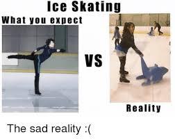 Figure Skating Memes - ice skating what you expect vs reality the sad reality meme on me me