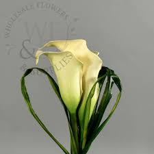 silk calla lilies 6 artificial calla corsage wholesale flowers and supplies