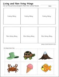 living and non living things worksheets for preschools