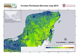 Map Of Yucatan Regional Biomass Mapping Mexico U2013 Esa Due Globbiomass