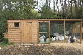 chicken houses house with nestboxes and large adjoining run