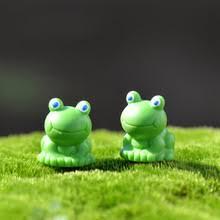 Decorative Frogs Terrarium Frogs Reviews Online Shopping Terrarium Frogs Reviews