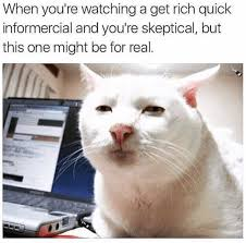 Animal Memes - 15 animal memes that are a little too real for us humans i can has