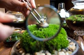 tiny world terrariums by michelle inciarrano and katy maslow