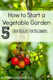 how to choose plants for your first vegetable garden my frugal