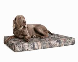 Dog Sofas For Large Dogs by Camouflage Memory Foam Dog Bed For Hunting Dogs
