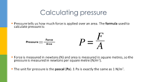 Area Formula by Calculating Pressure Aseel Samaro Ppt Video Online Download