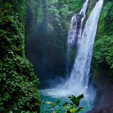 waterfalls images Bali waterfalls day trip the opposite travellers jpg