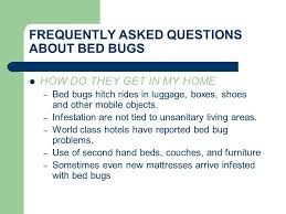 Living With Bed Bugs About Bed Bugs What Are Bed Bugs Bed Bugs Are Small Brownish