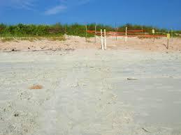 free images beach landscape sea coast sky shore wave