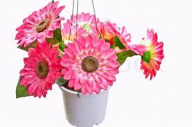 artificial flower artificial flowers pots stock photo colourbox