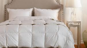 White Down Comforters Duvet Bpralw Awesome Twin Duvet Insert Amazon Com White Down