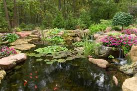Aquascape Pond Pumps Blog Helpful Pond Information Pondgeek Com