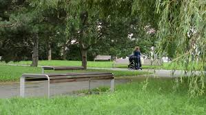 Park Bench Position Metal Park Bench In A Park Stock Footage Video 14152109 Shutterstock