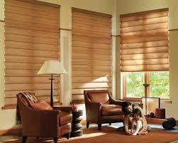 plain decoration living room blinds valuable inspiration window