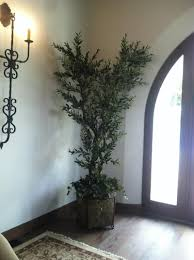Home Decor Artificial Trees 100 Fake Tree Home Decor 143 Best Topiaries Images On