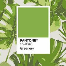 2017 Color Of The Year Pantone Pantone Color Of The Year 2017 Bringing Greenery Inside Within