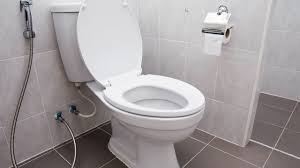 Toilet by How To Fix A Leaking Toilet Youtube