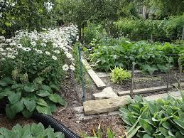 cottage gardener blog cottage gardener ltd