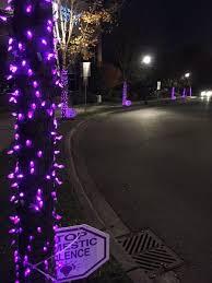 purple light nights home