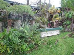 dolphin bay updated 2018 prices u0026 hotel reviews hilo hawaii