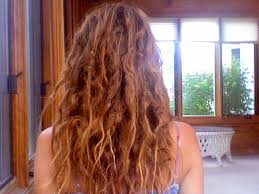 stages of dreadlocks pictures the beauty of the early messy stage of natural neglect dreadlocks