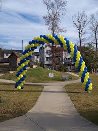 Foundation For Fighting Blindness 112 Best Arcos Decoración Images On Pinterest Balloon