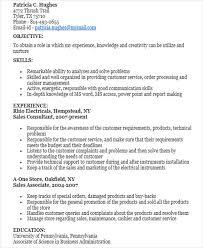 budget assistant sample resume 17 best business resume samples