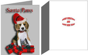 boxed christmas cards sale beagles dogbreed gifts beagle christmas
