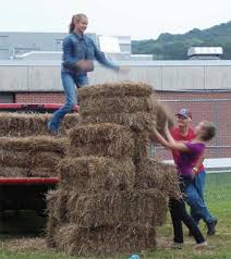 va farm bureau virginia farm bureau wvfb farmer rancher