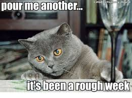 Mouse Memes - 25 best memes about mouse mouse memes