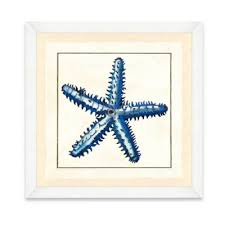 buy starfish decorations from bed bath beyond