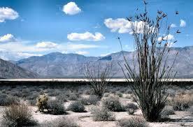 where is anza borrego anza borrego desert picture of anza borrego desert state park
