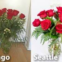best online flower delivery order flowers chicago flowers ideas for review