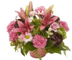 wedding flowers queanbeyan order online flowers in canberra florists canberra